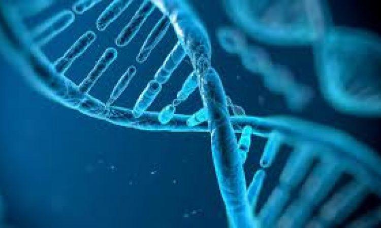 Γονιδιακή μετάλλαξη επηρεάζει την επιθετικότητα του καρκίνου του προστάτη