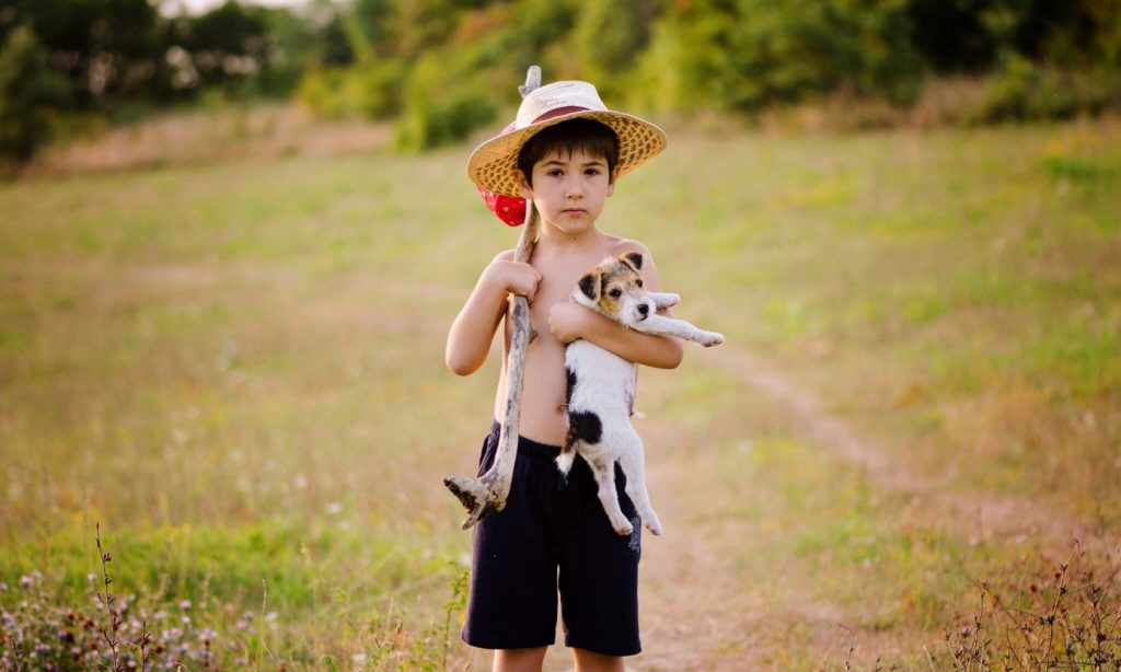 PET: Τα ζωάκια των παιδιών