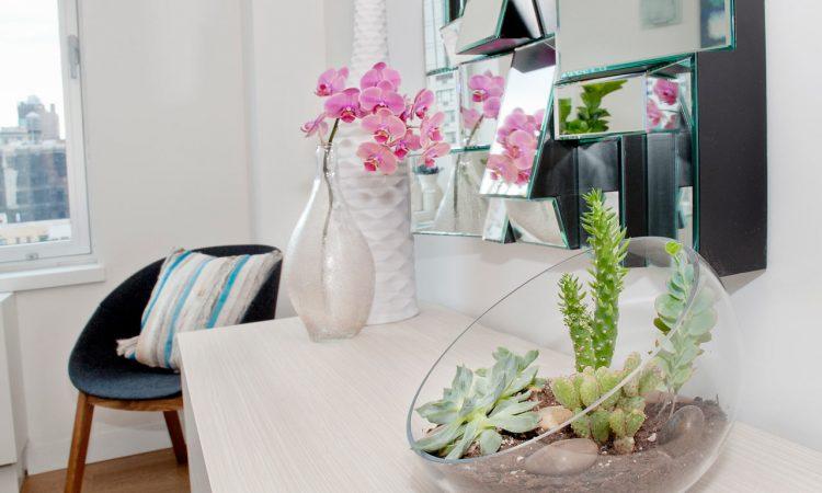 """ΚΗΠΟΣ: Τα φυτά που """"καθαρίζουν"""" το σπίτι σας"""