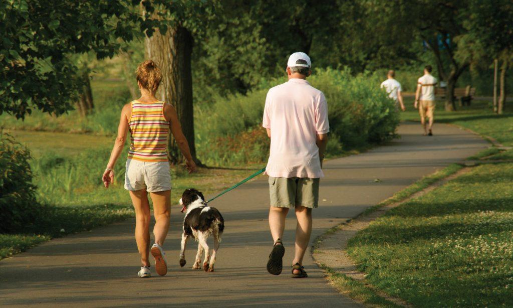 PET: Νέο πρόστιμο σε ιδιοκτήτες σκύλων που δε μαζεύουν τις ακαθαρσίες!