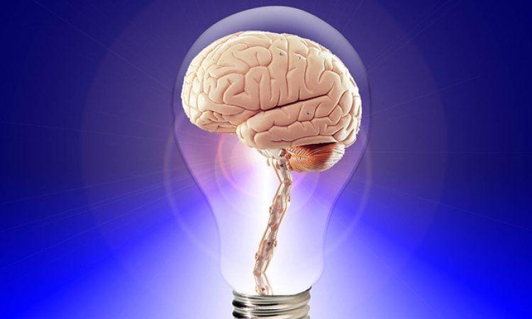 Μελέτη αποκαλύπτει τι συμβαίνει στον εφηβικό εγκέφαλο