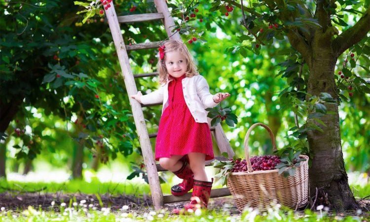 ΚΗΠΟΣ: Θέλετε να είναι ο κήπος σας ζηλευτός;