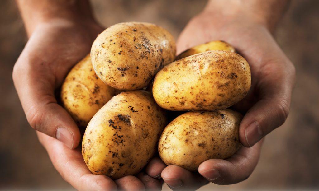 Σας αρέσουν οι πατάτες;