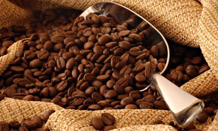 Μόριο του καφέ λίπους δίνει ελπίδες θεραπείας της παχυσαρκίας